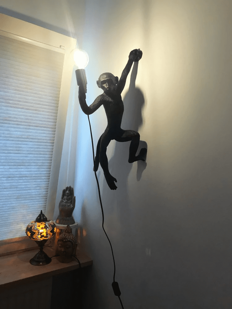 Monkey Lamp Hanging photo review