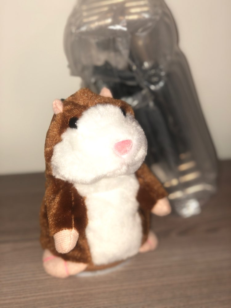 Talking Hamster Toy photo review