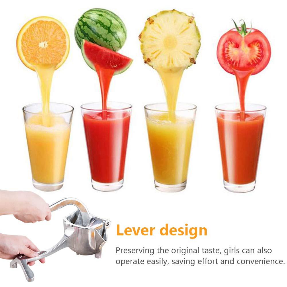 Fruit Juice Squeezer (14)
