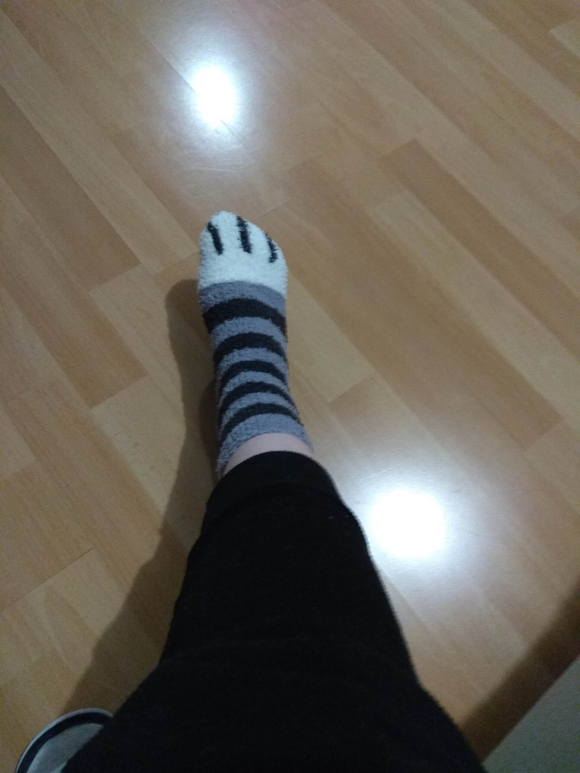Cute Cat Claw Socks photo review