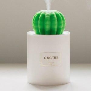 Portable Cactus Humidifier 2