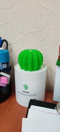 Portable Cactus Humidifier photo review