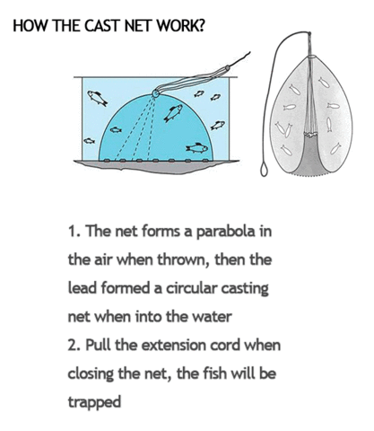 Magic Fishing Net 2