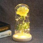 Enchanted-Rose-Flower-Lamp