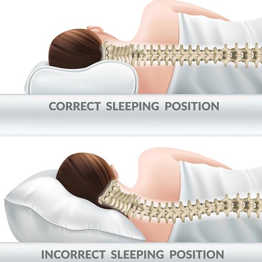Sleep Dream Pillow Reviews
