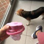 Floating Pet Fur Catcher photo review