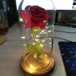 Enchanted Rose Flower Lamp photo review