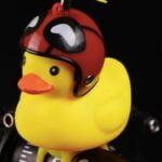 "The-""Ducky""-Light-Horn"